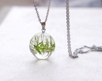 Real Plant Necklace - phytology green pendant - phytologist gift for nature lovers