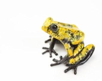 Poison dart frog - large - yellow & black - Bronze