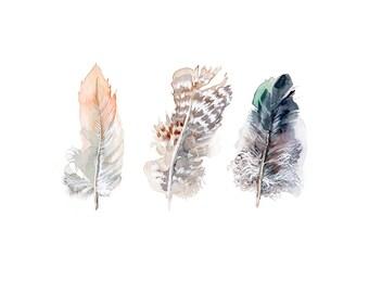 Feathers print, soft colors, 8x10 fine art print of original watercolor