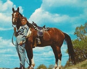 Big Sky Bay - 1950s Vintage Glam Cowgirl and Western Horse Postcard