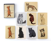 Cat Cards Assorted Cat Stationery Blank Boxed Note Cards