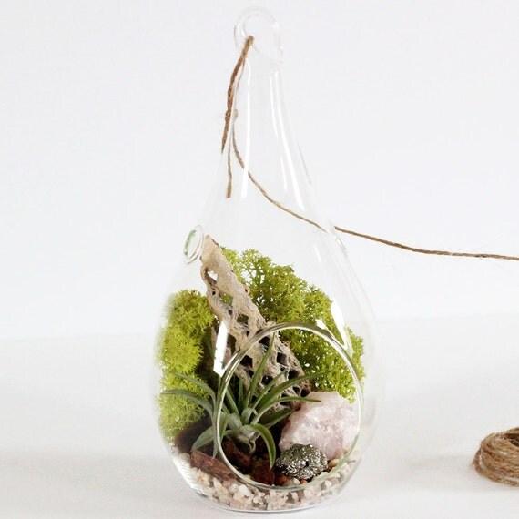 "Rose Quartz + Pyrite Hanging Terrarium Kit with Reindeer Moss - 8.5"" Teardrop"
