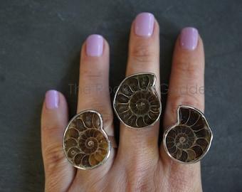 Ammonite Fossil ⊿ Ammonite Ring ⊿ Ammonite ⊿ Genuine Fossil  ⊿ Ammonite Silver ⊿ Fossil Ring
