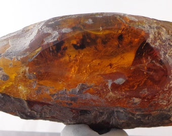 Blue Green Mexican Amber Window Polished 141g