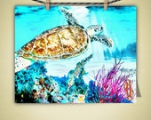 Sea Turtle Art Nature Animals Aqautic Ocean Painting Coastal Decor Nautical Art Photo Print, gift for surfer, gift for girlfriend