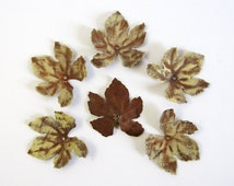Set of 6 Metal Grape Leaves - Stamped Metal Leaf Decoration - Rustic Painted Metal Hardware - Door Knob Accent Winery Decor - Leaf Ornament