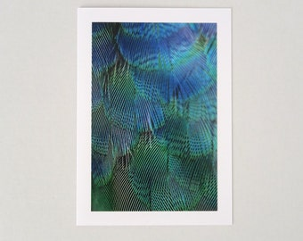 Photo Note Card, Handmade Blank Photo Greeting Card, Blue Green Feather Print, Fine Art Photography, 4x6 Feather Art Print