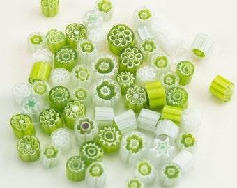 Millefiori Murrano -  Lime Green and White Millefiori mix (50-60 pieces)