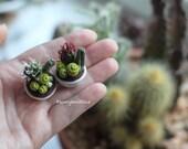Dollhouse miniature plant crochet cacti succulent composition arrangement collectable mini potted plants fairy garden faux plant 1/12 amigur
