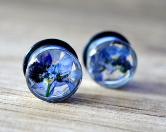 flower plugs forget me not plugs unique plugs ear plugs tunnels real flower plugs pretty floral gauges Unique tunnels resin plugs girly plug