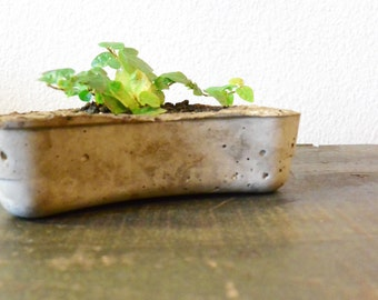 Organic shape Concrete Planter