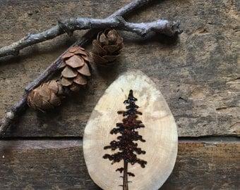Wood burned pine tree wood slice magnet.