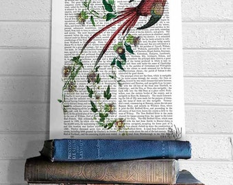 Passion Flower Bird Print - passion flower vine romantic gift for wife gift for mom mothers day gift valentine gift for wife anniversary