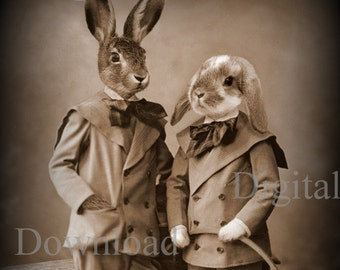 Bunny Pair Digital Download Photo