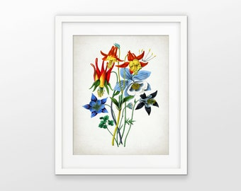Red, Yellow And Blue Flower Print - Botanical Print - Colorful Flower Decor - Flower Art - Single Print #1670 - INSTANT DOWNLOAD
