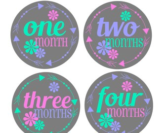 Girl Monthly Stickers / Monthly Baby Stickers Girl Month Stickers / Baby Month Stickers Girl / Baby Girl Monthly Stickers / Belly Stickers