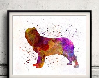 Napolitan Mastiff 01 in watercolor - Fine Art Print Glicee Poster Decor Home Watercolor Gift Illustration Dog  - SKU 2220