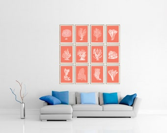 Coral print, coral wall art, coral print set, coral illustration, coral color art, sea coral print, coral pictures, beach house coral print