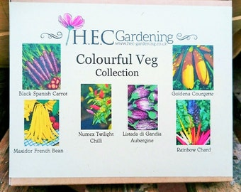 Colourful Veg Collection