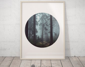 Forest Print, Forest Photography, Circle Wall Prints, Forest Art, Forest Wall Art, Photography Print, Geometric Print, Forest Wall Print