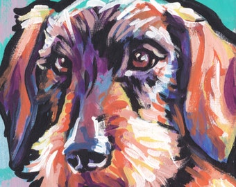 """wirehaired Dachshund portrait print of pop art dog painting bright colors 8x8"""""""