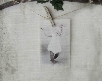 Shabby Cottage Rustic Decor. Woodland Nature Inspired Photography Display.  Twig Branch Hanger Display © 3VintageHearts