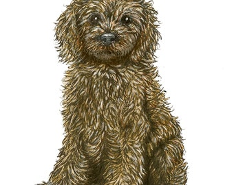 Scruffy Mongrel Puppy Greetings Card