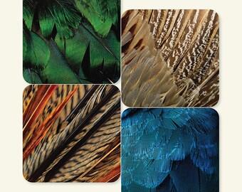 Exotic Bird Feathers Coasters (Set of 4)