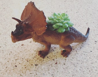 Upcycled succulent dinosaur plant