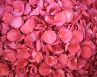 24 Cups Hot Pink Rose Petals for Weddings- Real Rose Petals, Rose Petal Runners