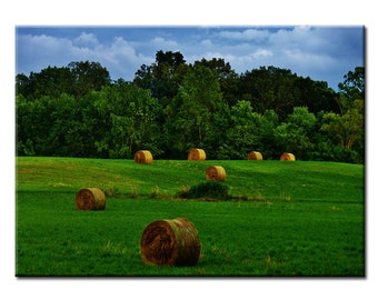 Indiana Field - Fine Art Photography Print