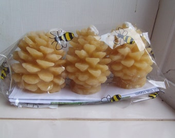 Pack of 3 Pine Cone Beeswax Candles