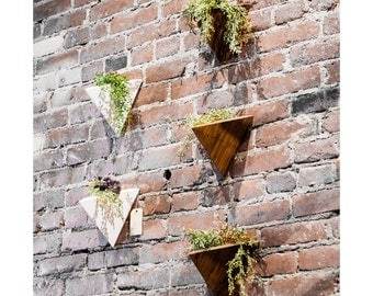 Geometric Triangular Wall Wood Planter