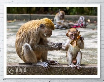 Monkey art print, motherly love, monkey photography, nursery print,monkey canvas, monkey picture mother and child, framed monkey baby monkey