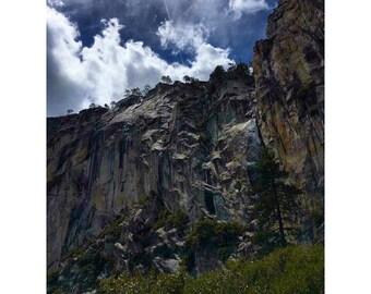 Look Up - Yosemite National Park
