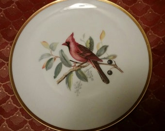 Vintage Hutschenreuther China Selb Bavaria Germany Audubon Drawing Design Bird Red Cardinal Cabinet Display Plate with Gold Band Trim