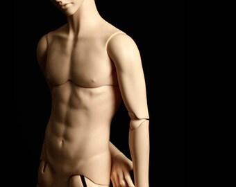 Male Body Lads & Plus (New Normal Skin Color) / Granado