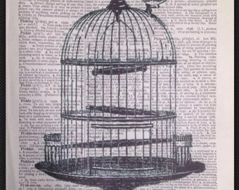 Vintage Birdcage print Original Dictionary Book Page Wall Art Picture gift