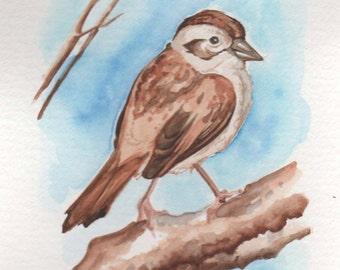 Friend on a Branch | 4x6 Original Watercolor