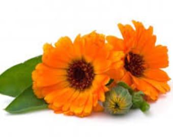Calendula Balm - Simple recipe for highly sensitive skin