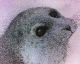 ACEO Seal wild eyes ATC