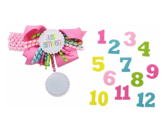 Monthly milestone hair bow headband
