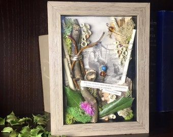 Thomas Jefferson Quote Shadowbox, Moss and Twigs Assemblage