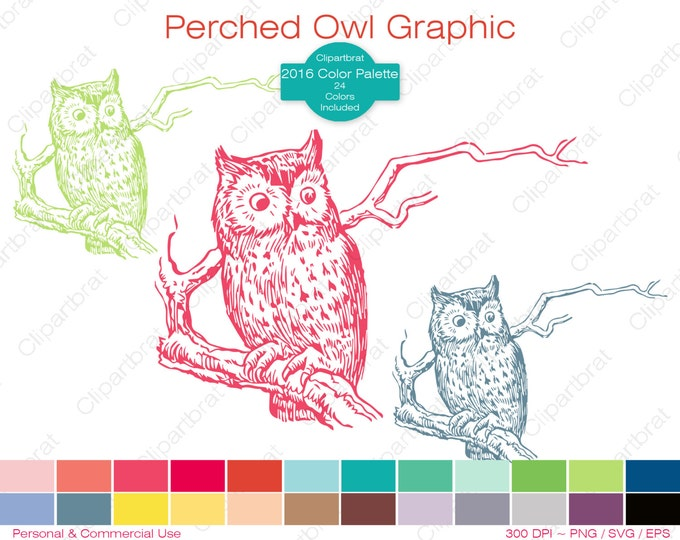 OWL Clipart Commercial Use Clipart Perched Owl on Branch Graphic 2016 Color Palette 24 Colors Owl Bird Vector Graphic Owl Stamp Png Eps Svg