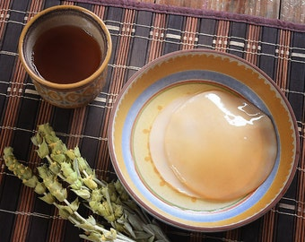 Kombucha Scoby - Live, Organic, Healthy Mother Culture with a Starter Tea