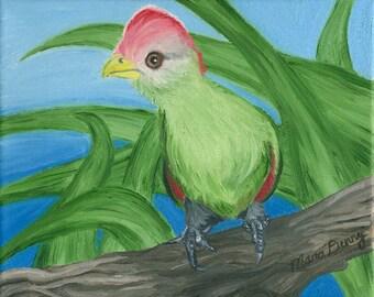 "Bird Oil Painting 8X10"""