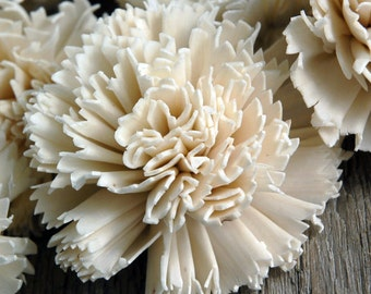 Pack of 12 Sola Carnation Flowers, Sola Flowers