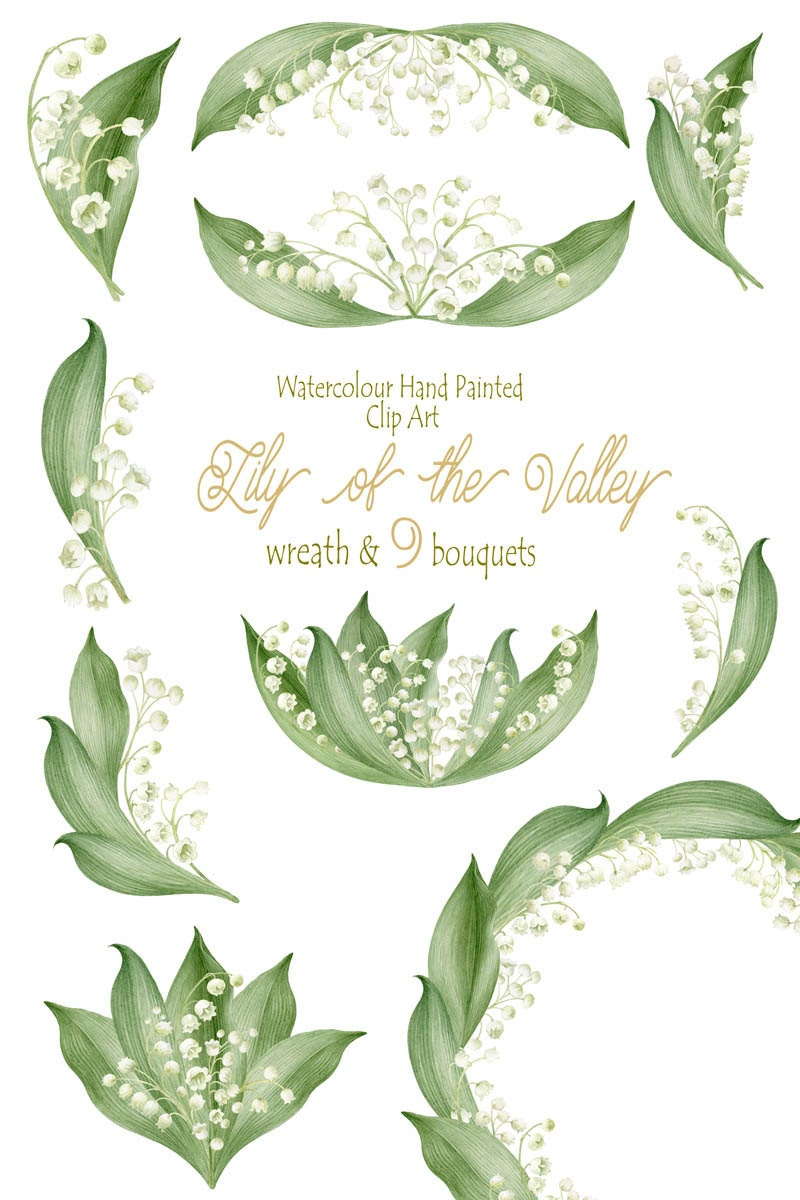Flower Clipart, Watercolour Hand Painted Lily of the valley ...