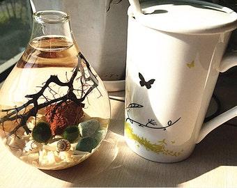 The Natural Aquarium Terrarium -Japanese Moss Ball,Living Home Decor,Black Sea Fan,Sea Coral Gravel,Tiny Seashell,Pebble,Office Desk Decor