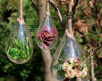 Set of 3 glass teardrop terrariums held by rope/wall hanging plant terrariums/hanging succulent planter holders decorate bedroom window